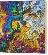 Ampicillin Lm Wood Print