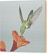 Amyrillis And Broadtailed Hummingbird Wood Print