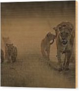 An African Lioness And Cubs, Panthera Wood Print