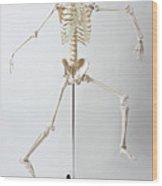 An Anatomical Skeleton Model Running And Jumping Wood Print by Rachel de Joode