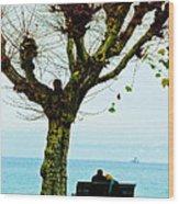An Autumn Affair Wood Print