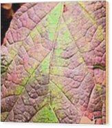 An Autumn's Leaf Wood Print