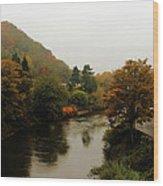 An Ironbridge Autumn Wood Print