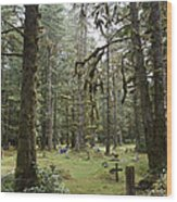 An Old Cemetary In A Forest Wood Print by Taylor S. Kennedy