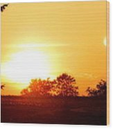 Photograph Of The White Hot Sun On An Orange Horizon With Lens Flare Wood Print