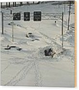 An Overhead View Of Buried Cars On An Wood Print by Ira Block