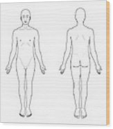 Anatomical Position, Artwork Wood Print