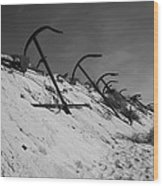 Anchor Beach 2 Wood Print