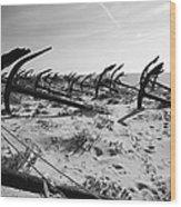 Anchor Beach 7 Wood Print