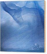 Ancient Blue Iceberg, Detail, Antarctica Wood Print