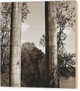 Ancient Columns By The River Wood Print