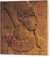 Ancient Egyptian Carving, Temple Of Luxor, Egypt Wood Print
