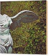 Ancient Flight Wood Print by Nichole Leighton
