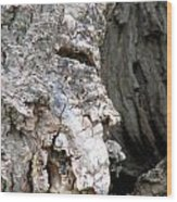 Ancient Rock Cliff Face At Rockwood Conservation Area  Wood Print