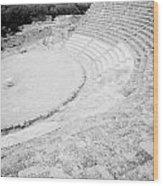 Ancient Site Of Roman Theatre At Salamis Famagusta Turkish Republic Of Northern Cyprus Trnc Wood Print by Joe Fox