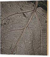 Ancient Skin Wood Print