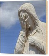 And Jesus Wept IIi Wood Print