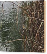 And The River Flows Wood Print