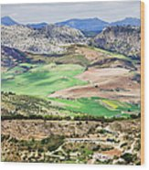 Andalucia Countryside Wood Print