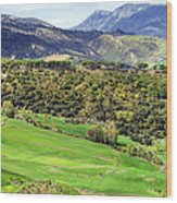 Andalusia Landscape Wood Print