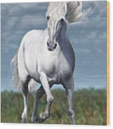Andalusian Freedom Wood Print by Suni Roveto