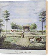 Andrew Jackson: Hermitage Wood Print