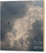 Angel Flight Wood Print