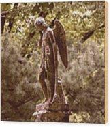 Angel In Tears Wood Print