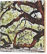 Angel Oak Tree 2 Wood Print