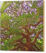 Angel Oak Tree1 Wood Print