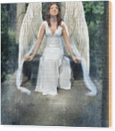 Angel On Stone Bench Looking Up Into The Light Wood Print