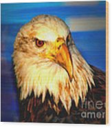 Angel The Bald Eagle Wood Print
