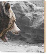 Angry Grizz Wood Print