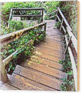 Angular Wooden Stairs Wood Print