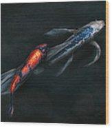 Animal - Fish - Beauty And Grace  Wood Print