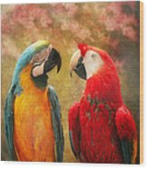Animal - Parrot - We'll Always Have Parrots Wood Print