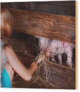 Animal - Pig - Feeding Piglets  Wood Print