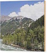 Animas River Colorado Wood Print
