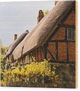Ann Hathaway Home Wood Print