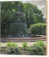 Annapolis Fountain Wood Print