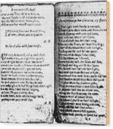 Anne Bradstreet Poems Wood Print