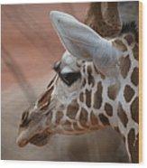 Another Giraffe Wood Print