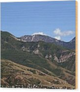Another View Of Salt Lake City Wood Print