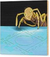 Ant On Pressure Sensor, Sem Wood Print