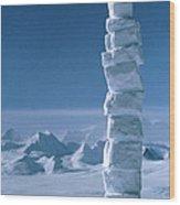 Antarctic Snowman Wood Print