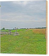 Antietam Battle Of The Cornfield Wood Print