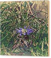 Antiquated Flower Wood Print