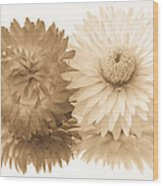 Antique Floral Duo Wood Print