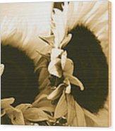 Antique Petals Wood Print