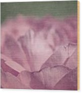 Antique Pink Wood Print by Aimelle
